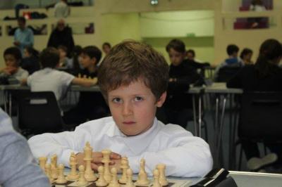Alexandre sp